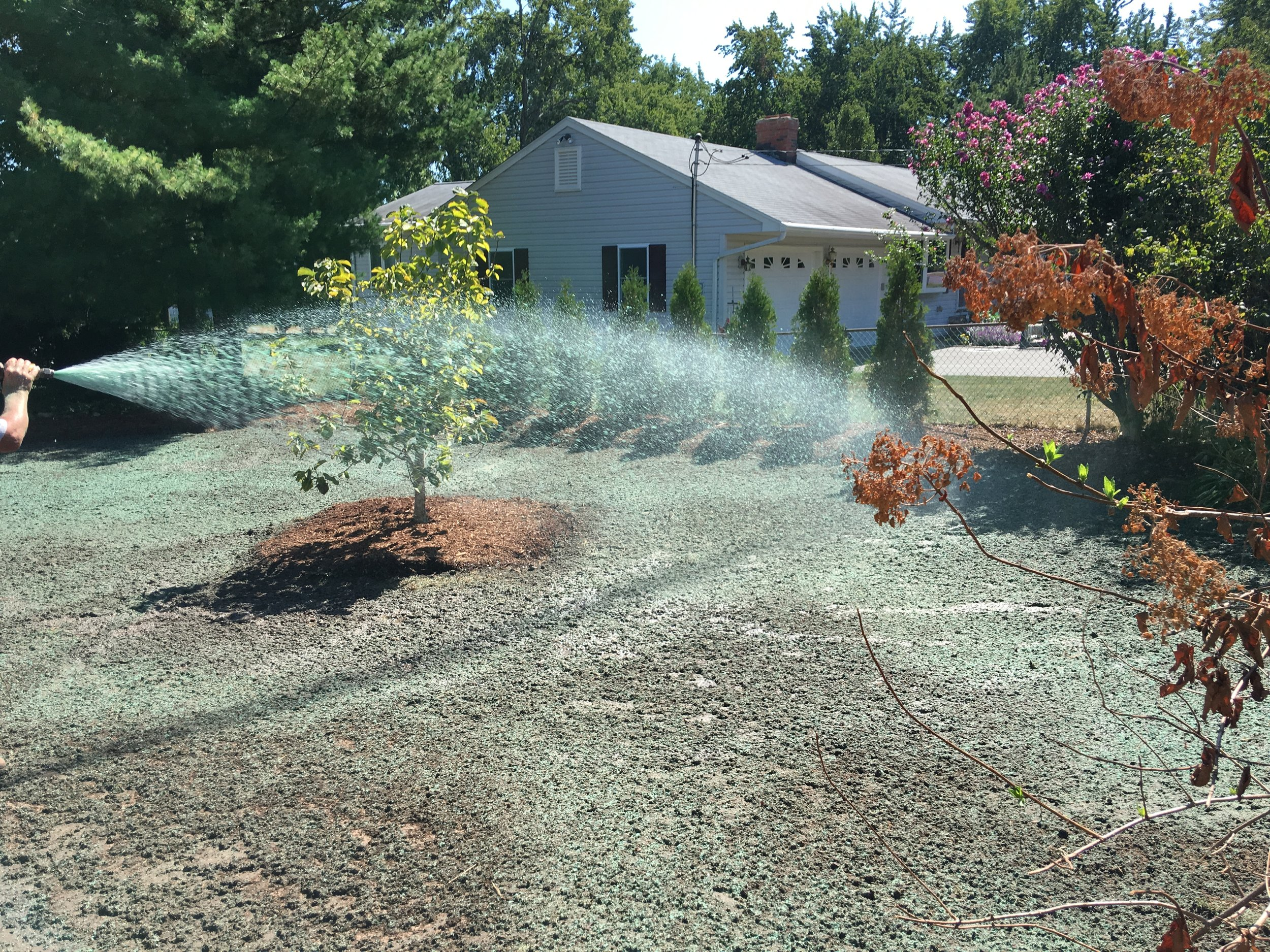 Landscapers spraying a dirt lot with grass seeds