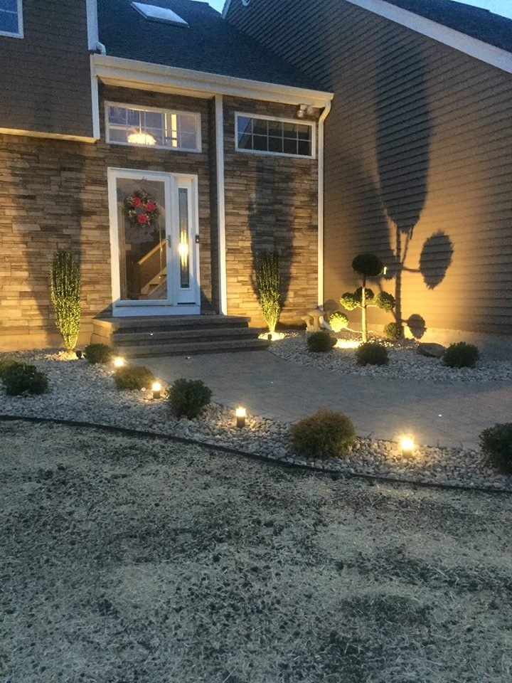 Landscape Planting Lighting.jpg