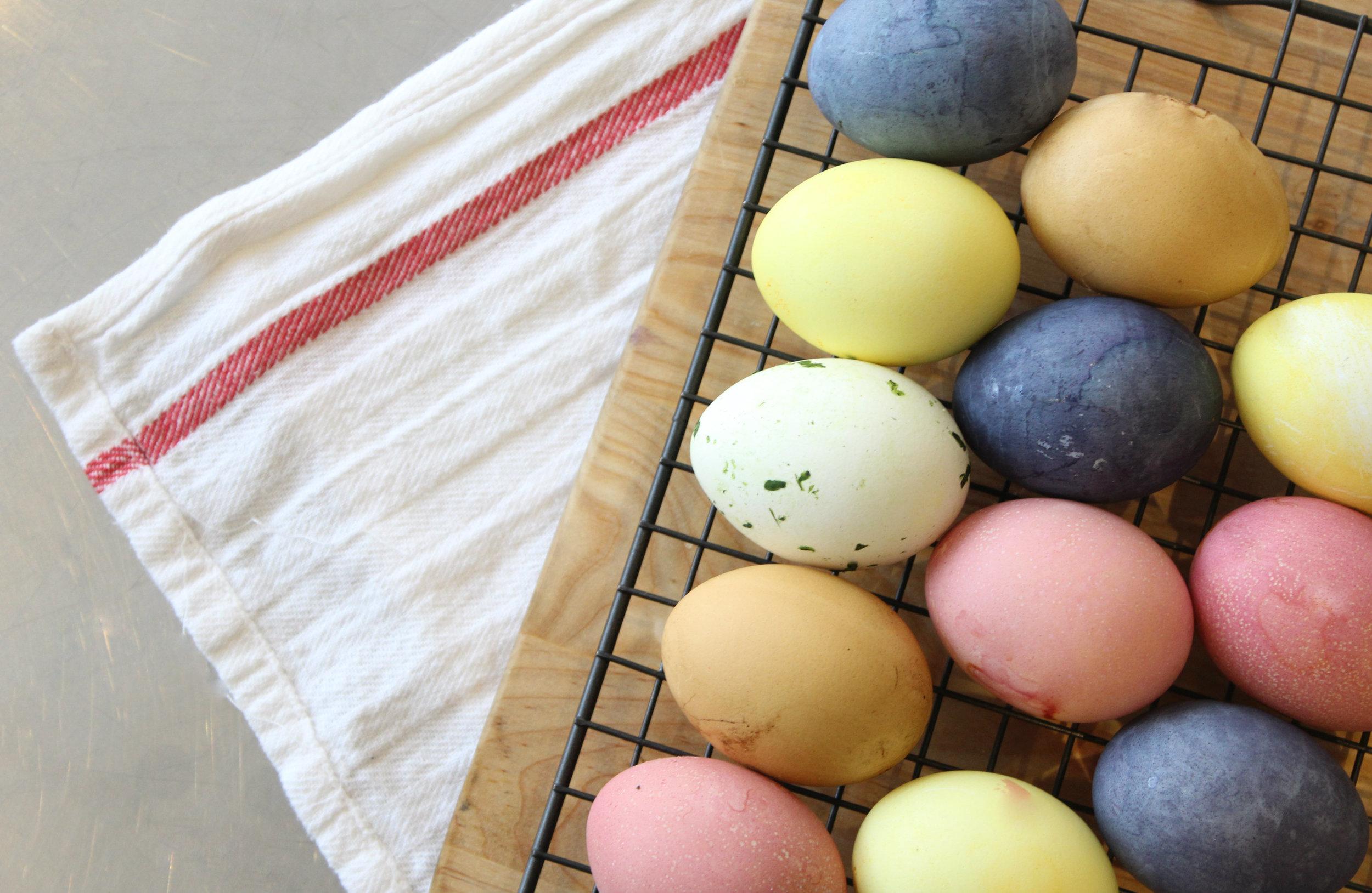 eggs9.jpg