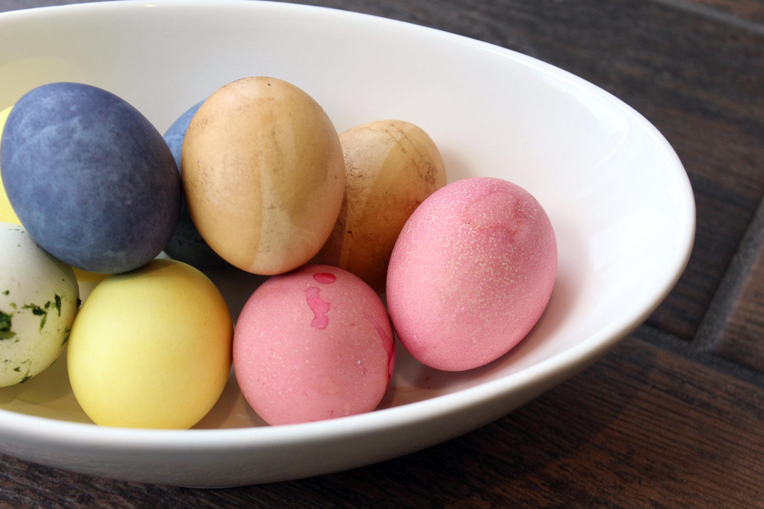 eggs8.jpg