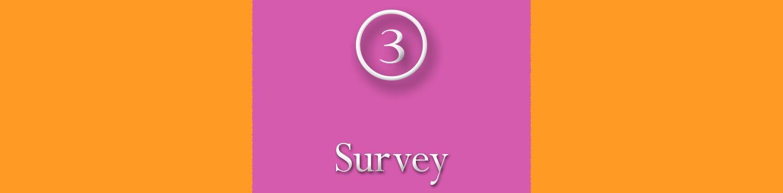 BB Survey Banner Surv.jpg