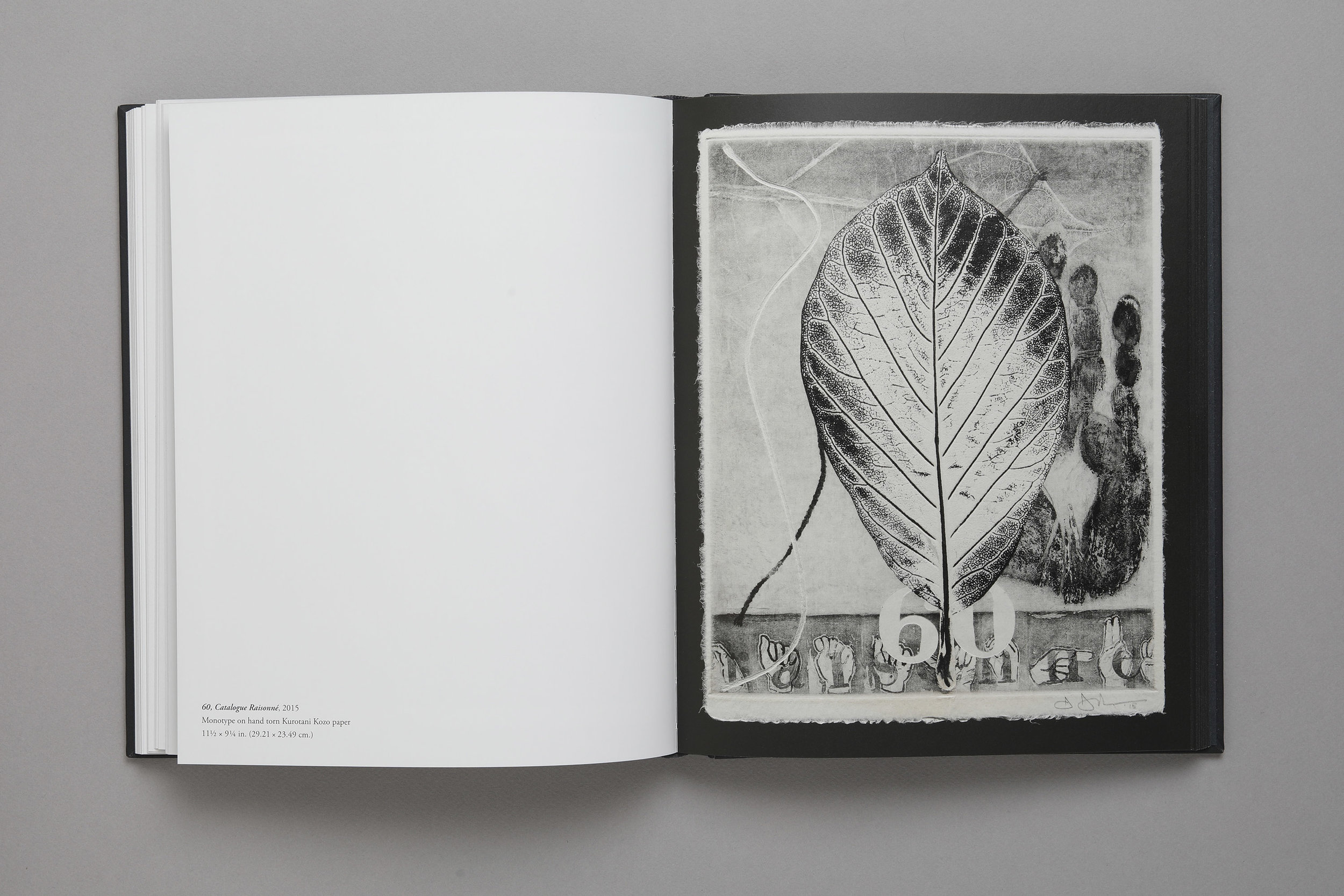 Jasper Johns: The 100 Monotypes, plate 60