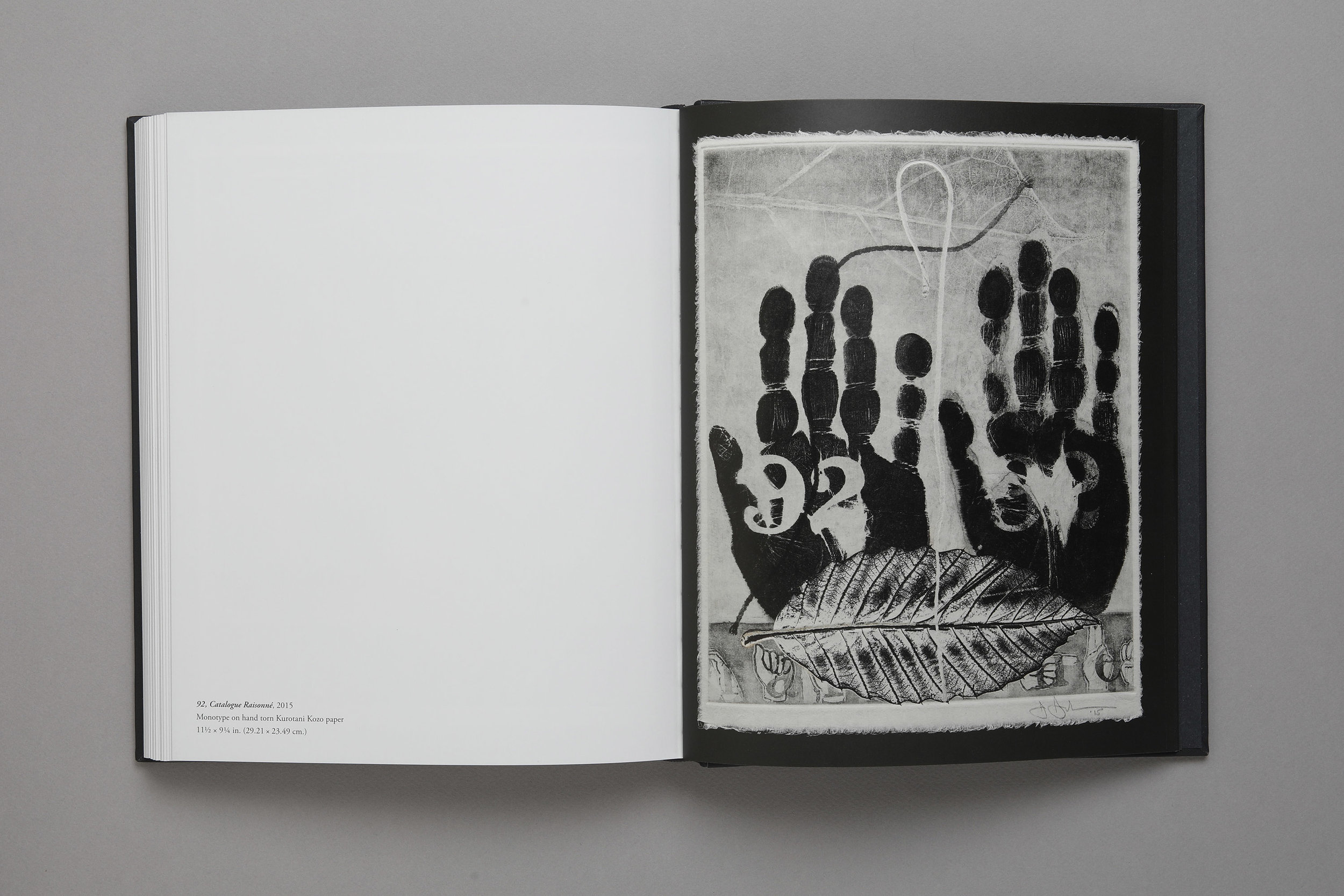 Jasper Johns: The 100 Monotypes, Softcover, plate 92