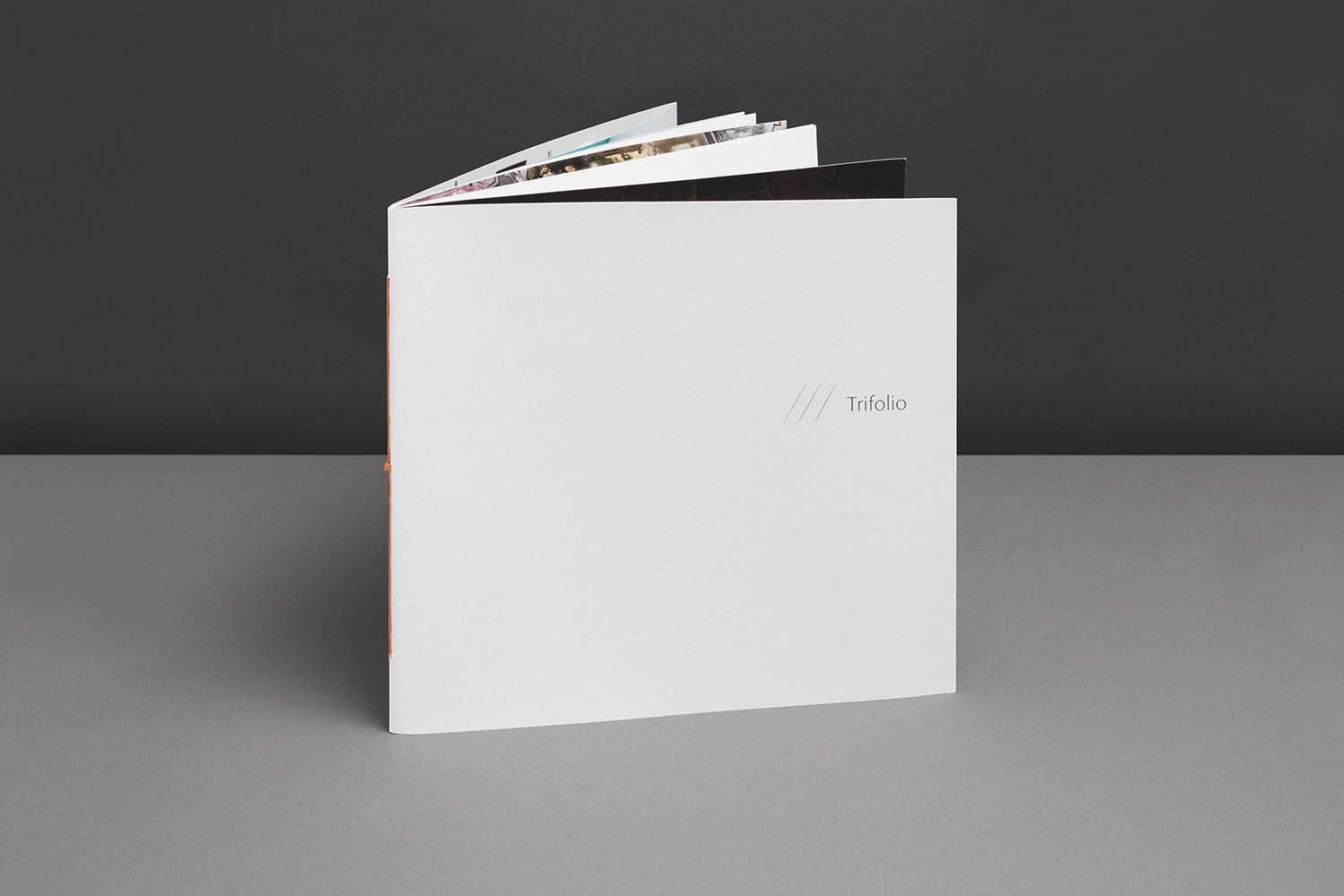 Where the Ink Meets the Paper: Trifolio promotional mailer