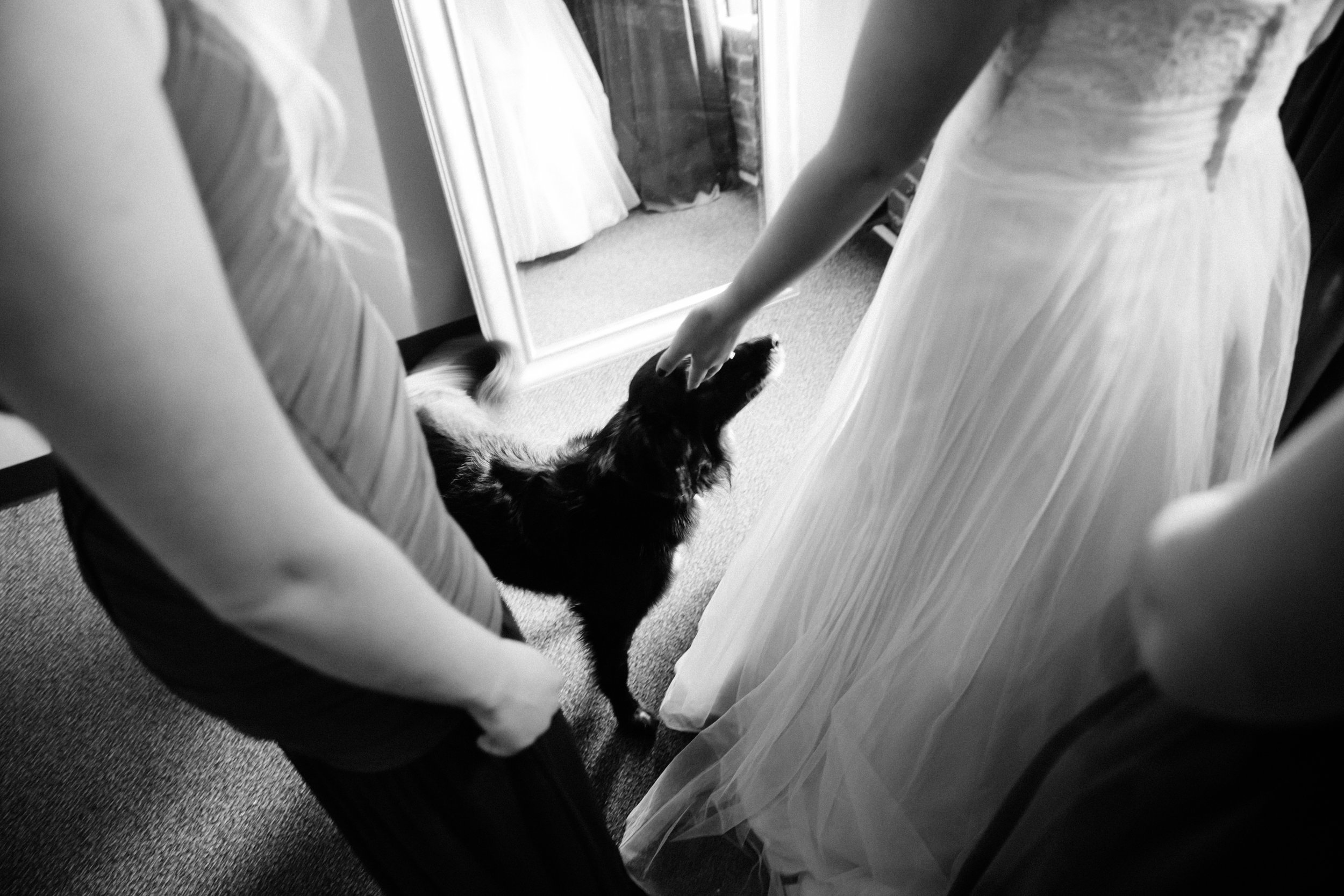 Wedding Photos-60.jpg