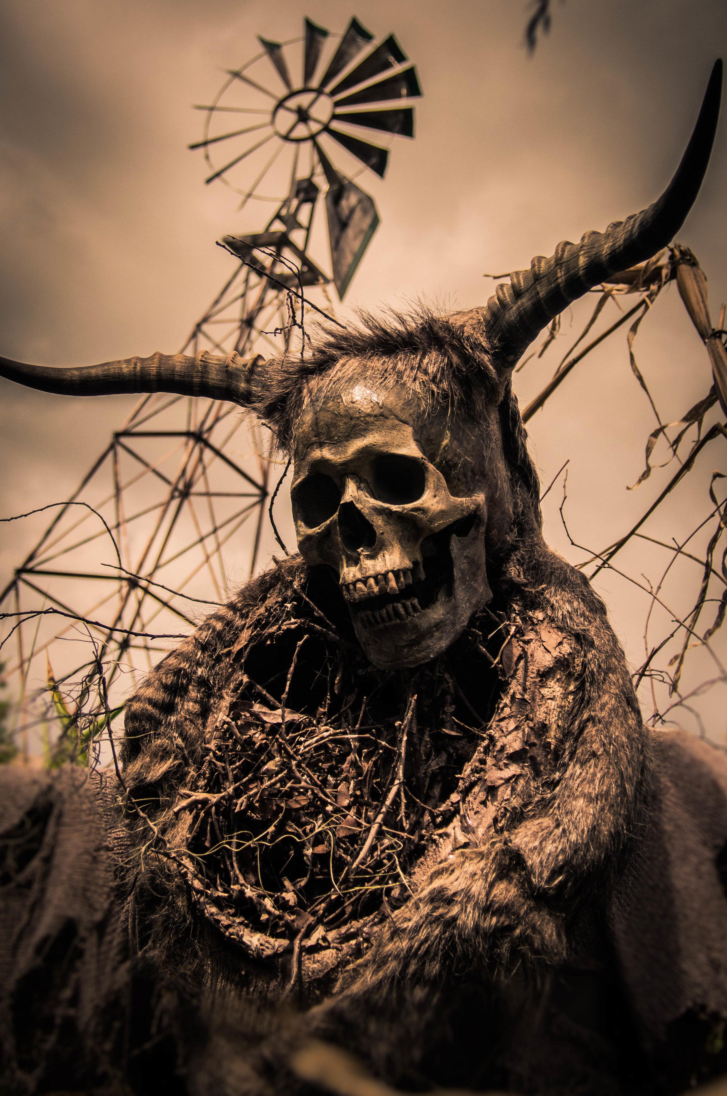 Scarecrow (1 of 1).jpg