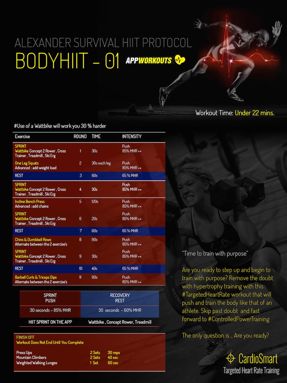 bodyhiit copy.jpg