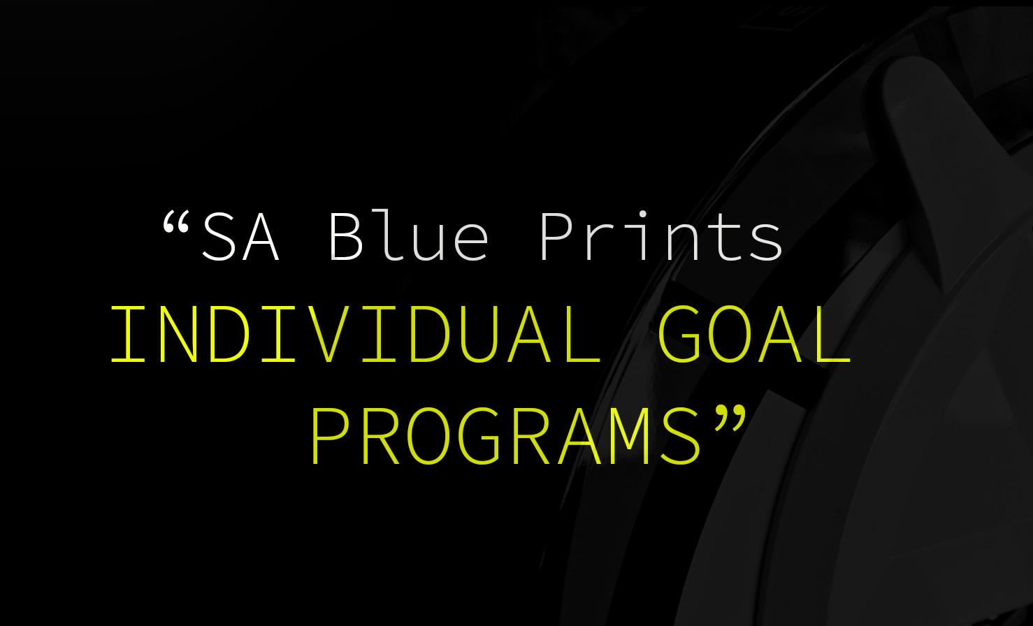 SA Blueprint.jpg