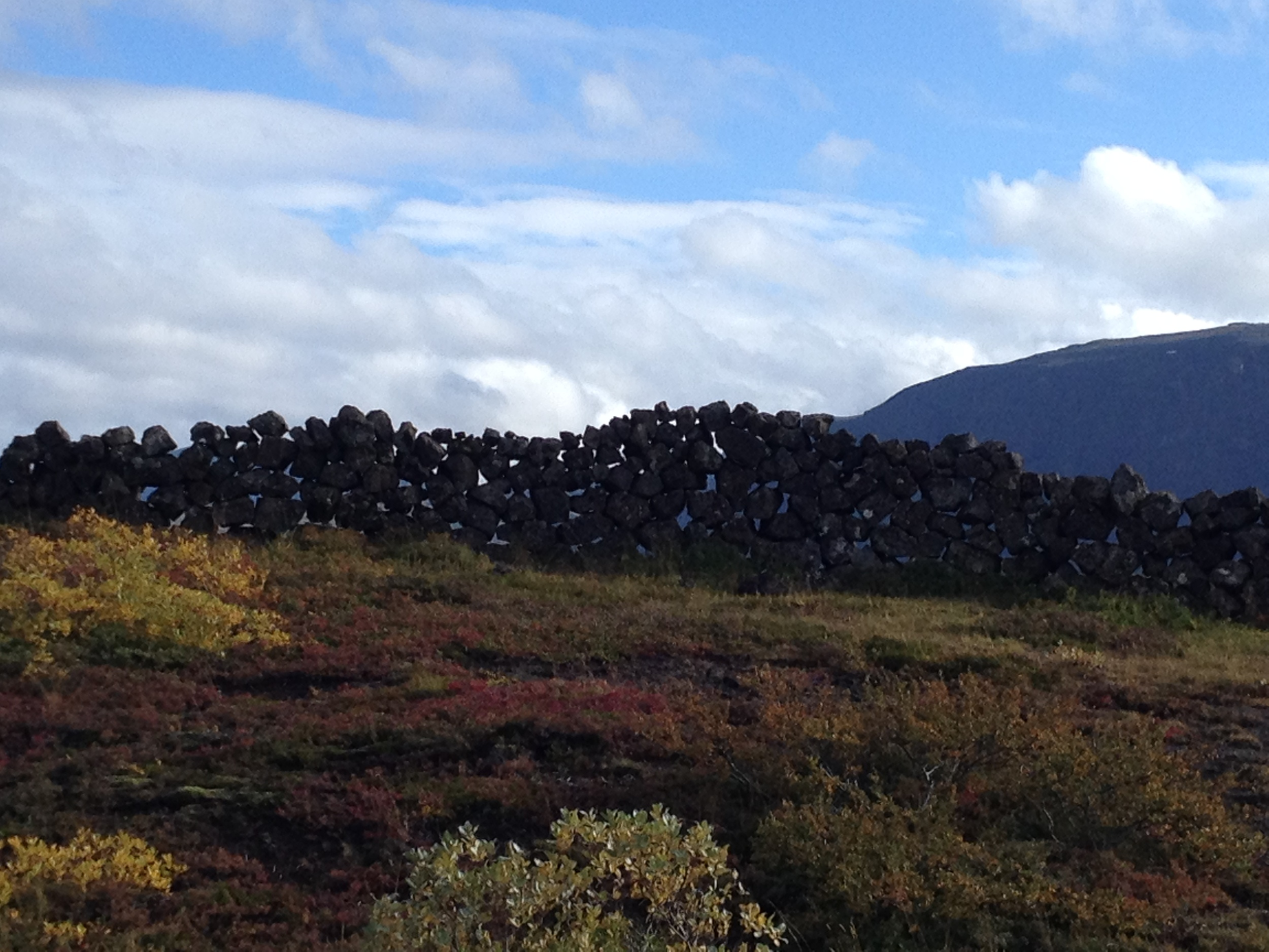 Ancient rock wall, a sheep enclosure in Þingvellir.