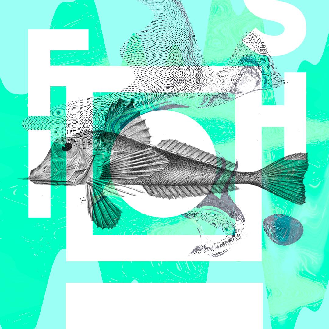 Day 3/100 : GoFish