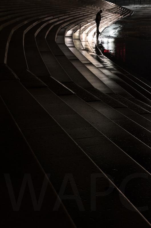 Waters Edge by Tim Growcott - C