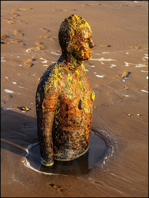 That Sinking Feeling by Ian Griffiths - C (Int col)
