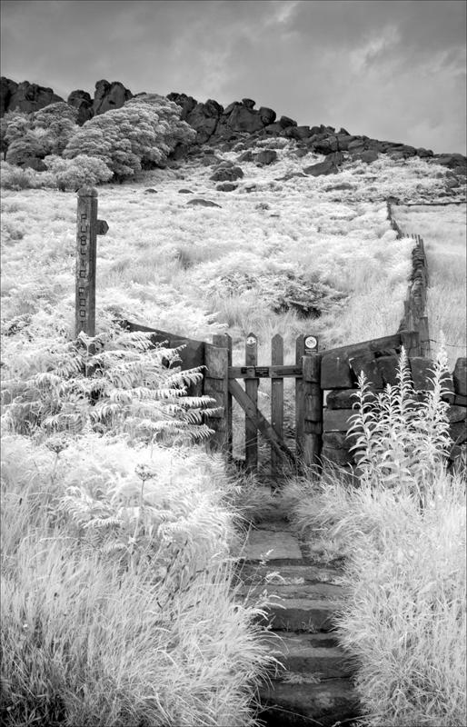 Pathway to the Roaches by Tony Thomas - C (adv mono)