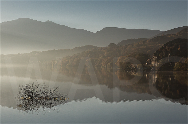 Early Morning Mist by Janet Griffiths - C (adv col)