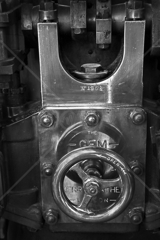 Detail of Merryweather Steam Powered Fire Engine by Peter Hodgkison - 1st (Int mono)