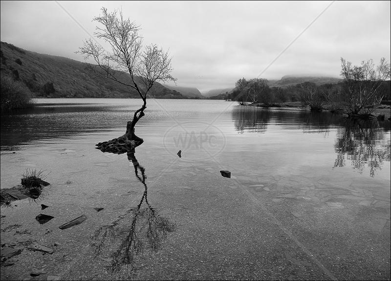 Llyn Padarn by Ian Griffiths - HC (INT mono)