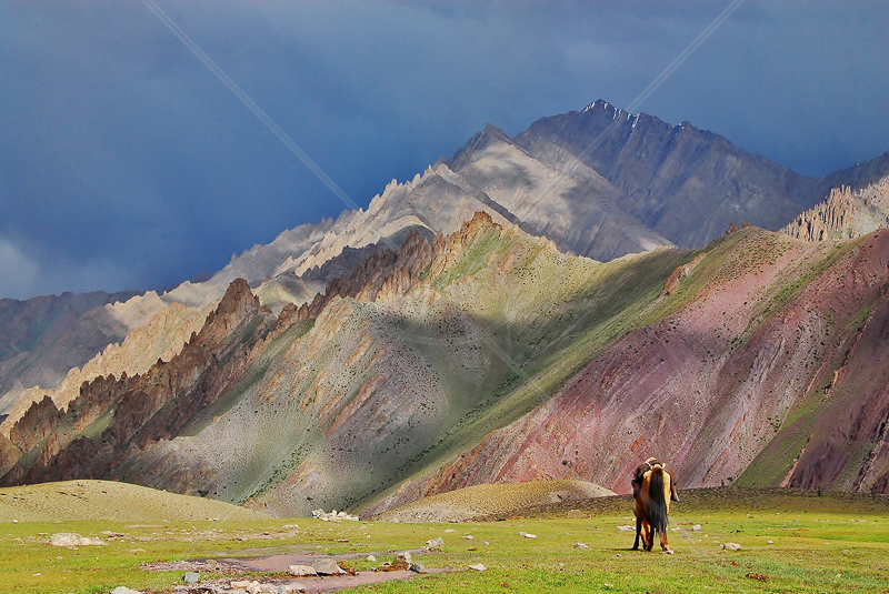 Gathering Storm-Ladakh-India by Andy Udall - C (PDI)