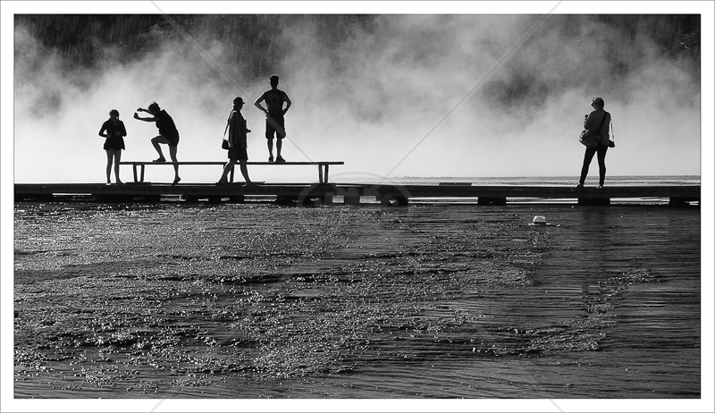 Silhouettes by Janet Griffiths - 2nd (Adv mono)