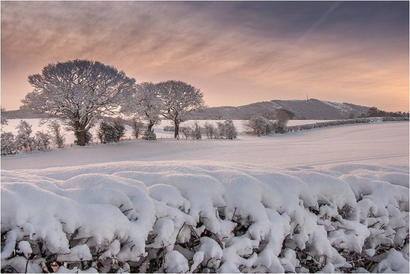 Snow Fields, Admaston, Telford by Andy Udall - 3rd (PDI)