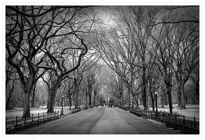 The Mall Central Park by Calvin Downes - C (Adv mono)