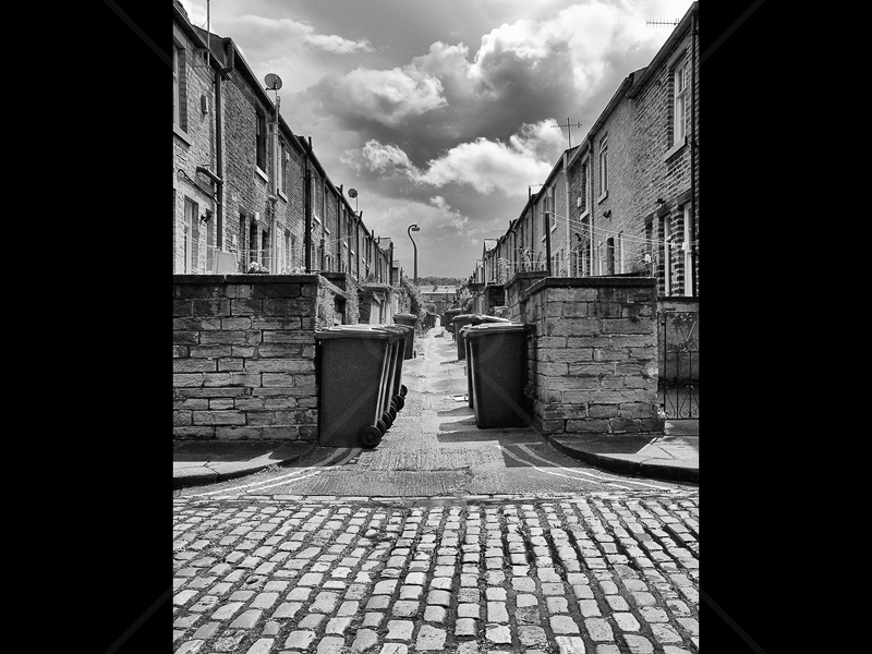Alley Cat by Howard Holden - C (Int mono)