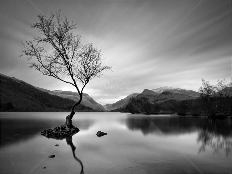 Padarn Movement by Hugh Stanton - 2nd (Adv mono)