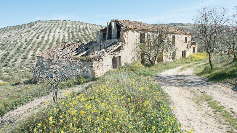 Andalusian Farmhouse by Audrey Price - Print - C