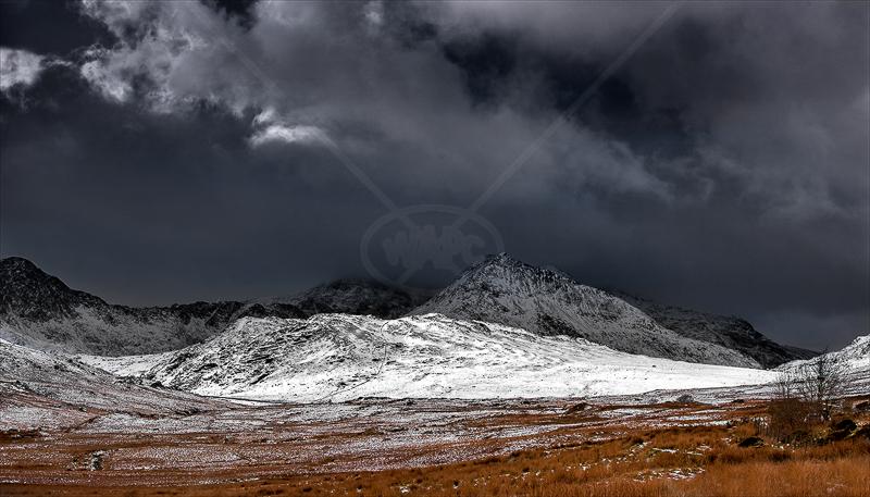 First Snow by Tony Thomas - PDI - C