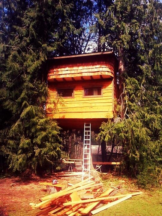 back.of.treehouse.jpg