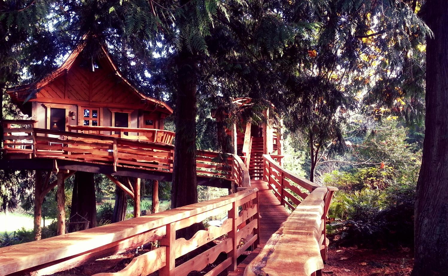 big.treehouse.jpg