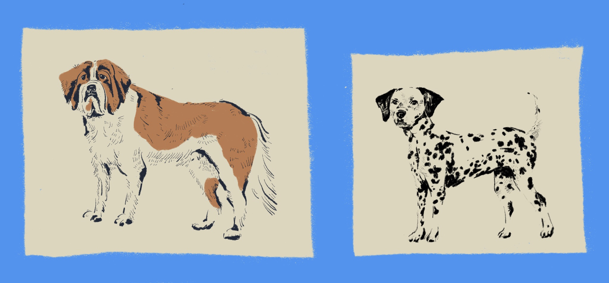 Vintage Dogs Dalmatian_Mallory Cohn.jpg