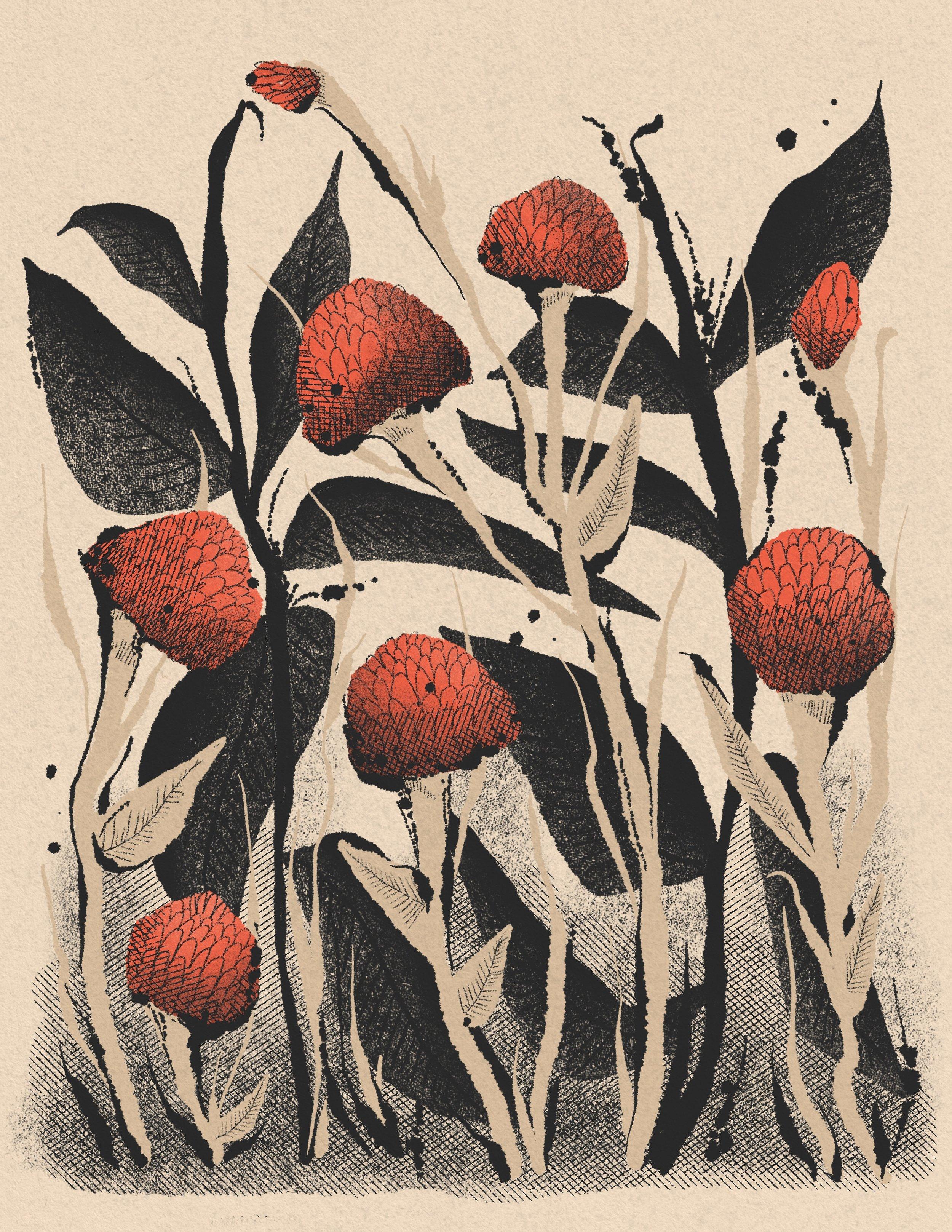 190904_flowers 1.JPG