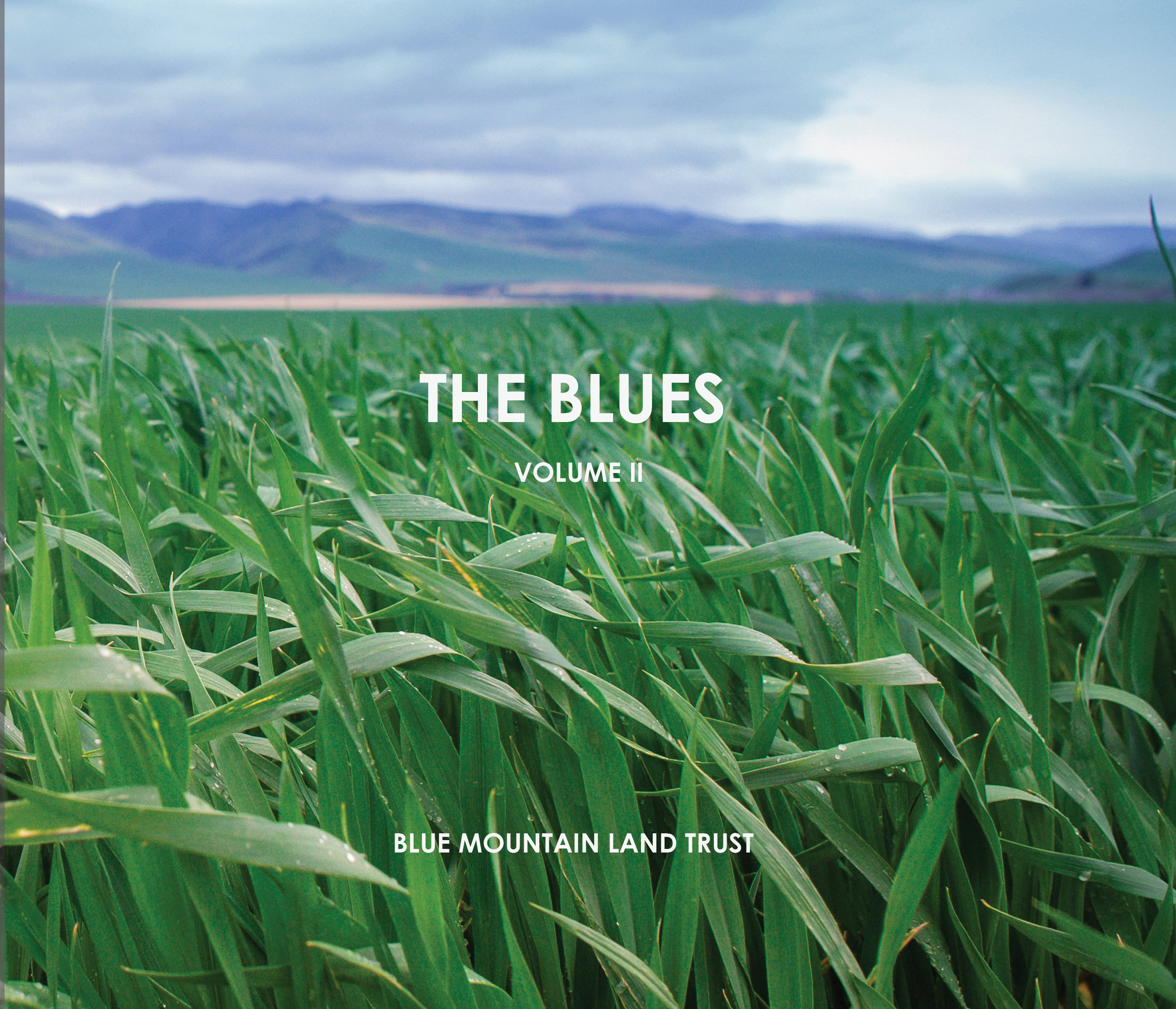 The Blues II - Front cover for website.jpg