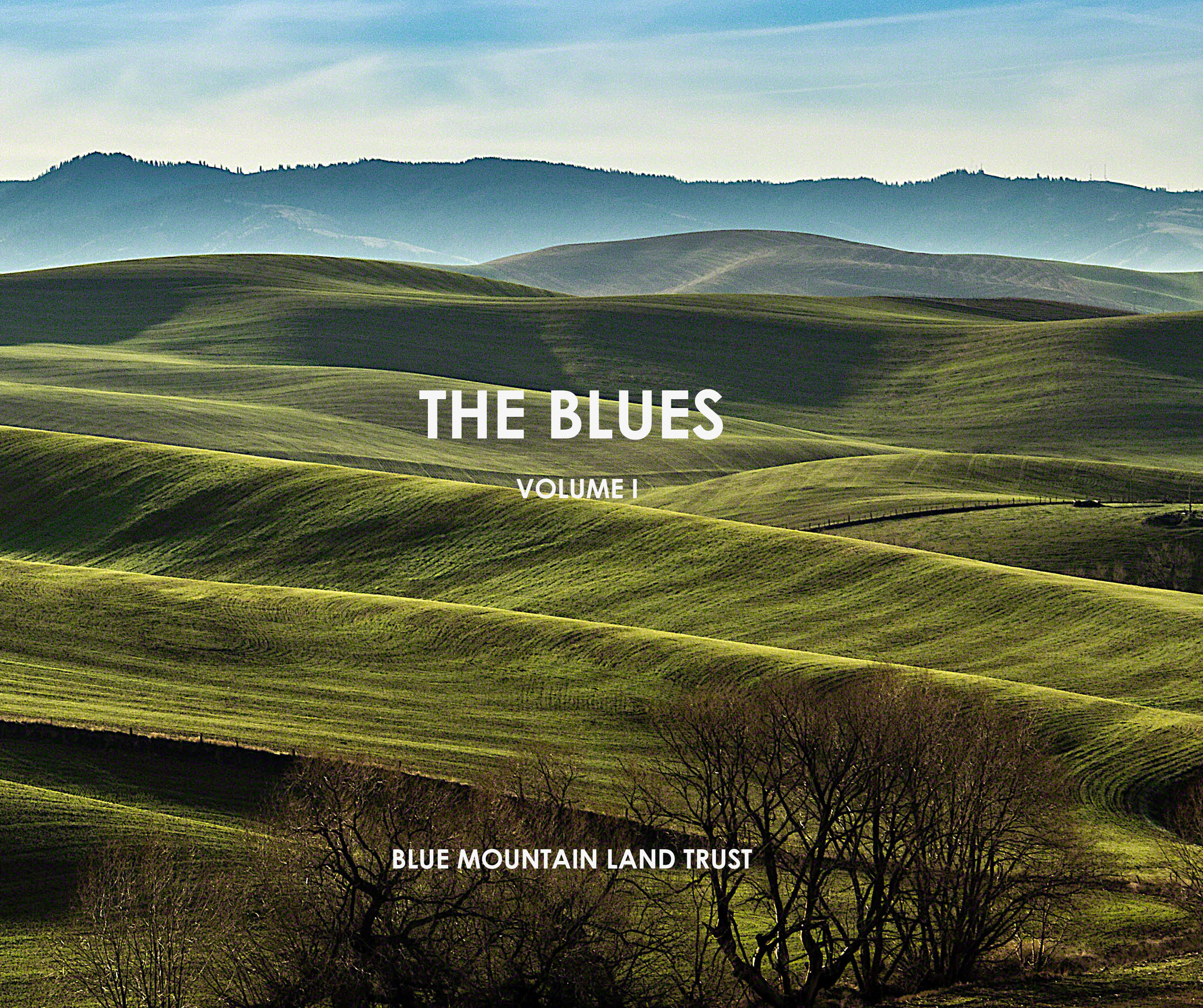 The Blues - export for website pages0.jpg