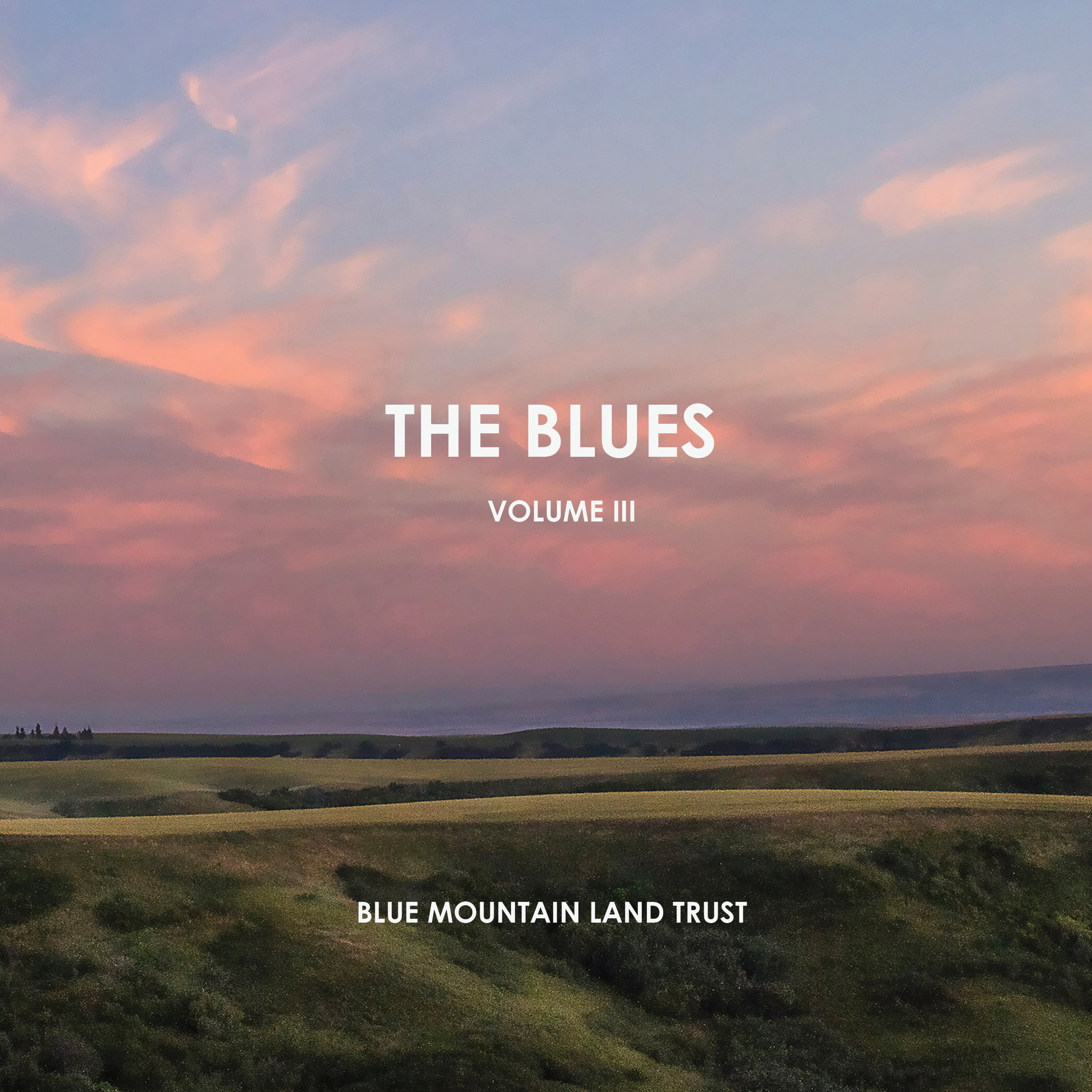 The Blues III - Cover website.jpg