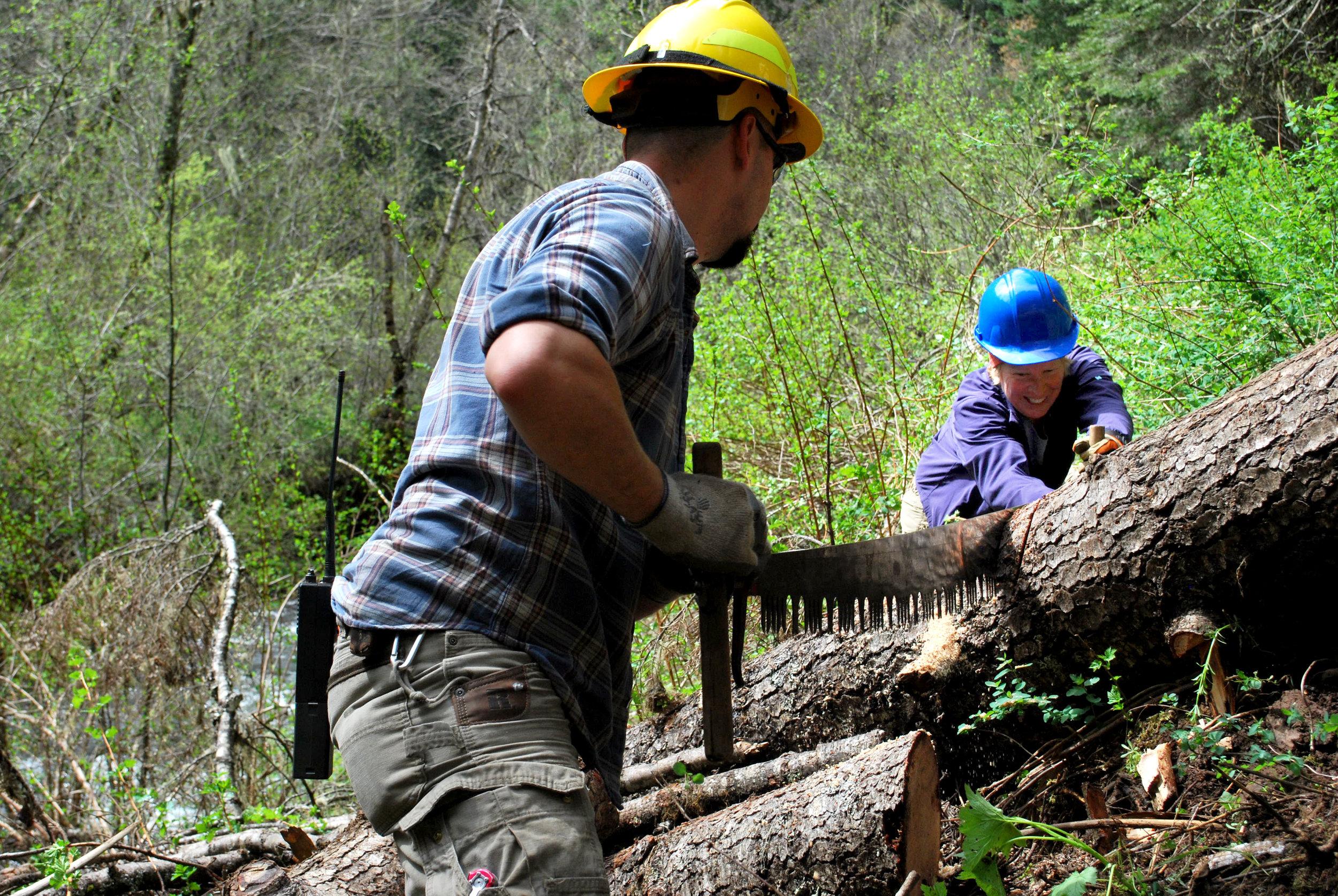 cutting a log.jpg
