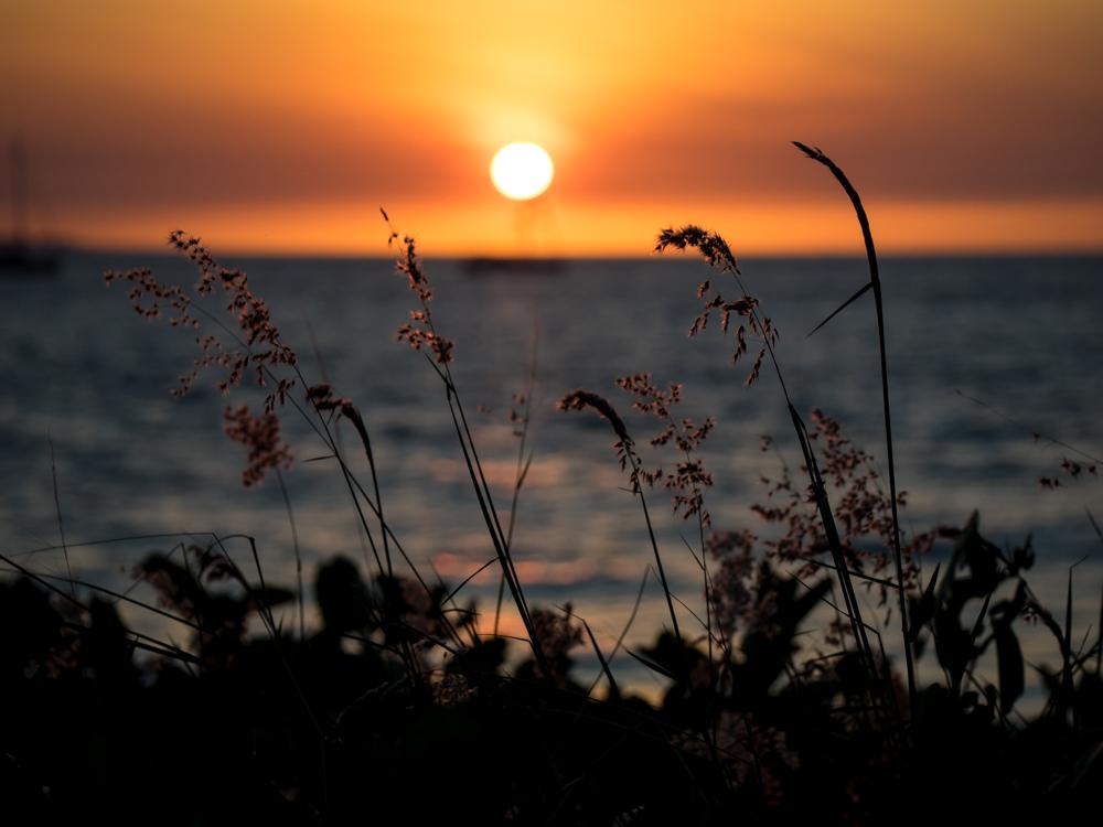 LONR - sunrise-16.jpg
