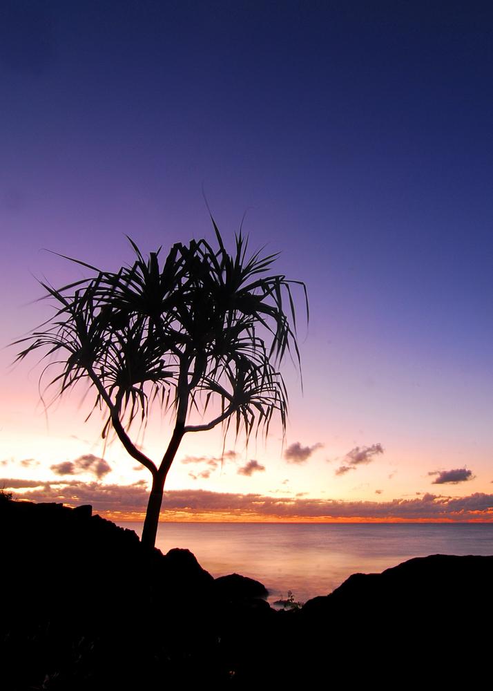 LONR - sunrise-4.jpg