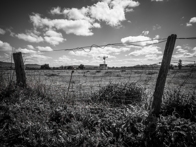 LONR - Tamworth-4.jpg