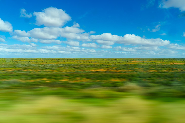 LONR - Paika - hay-1.jpg