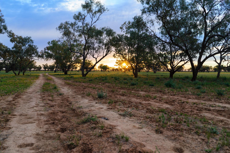 LONR - Outback Qld-110.jpg