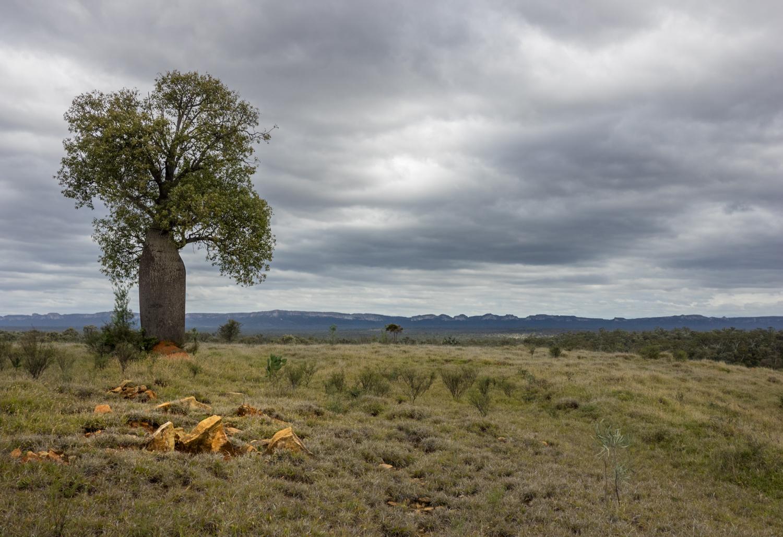 LONR - Outback Qld-71.jpg