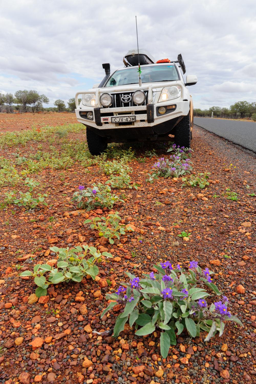 LONR - Outback Qld-102.jpg