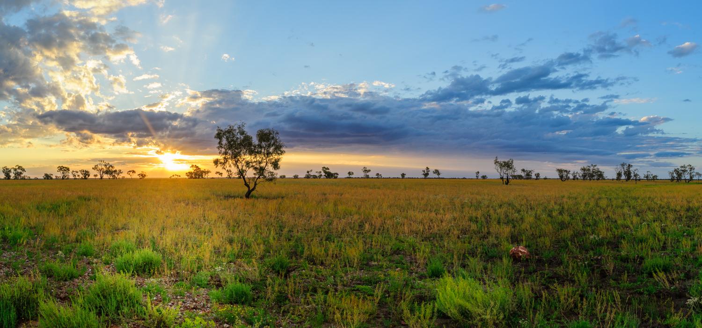 LONR - Outback Qld-94.jpg