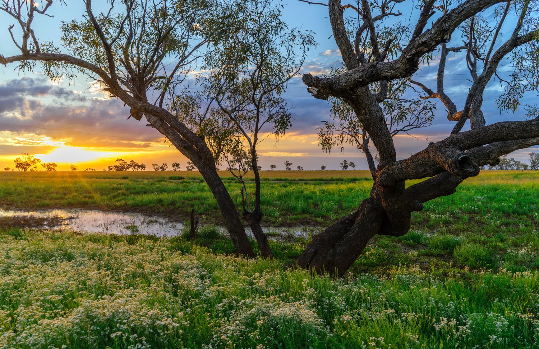 LONR - Outback Qld-93.jpg