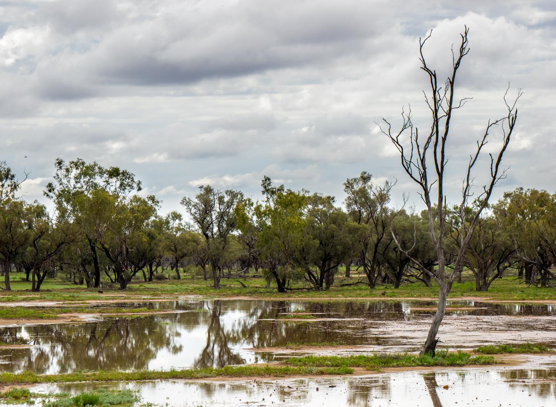 LONR - Outback Qld-14.jpg