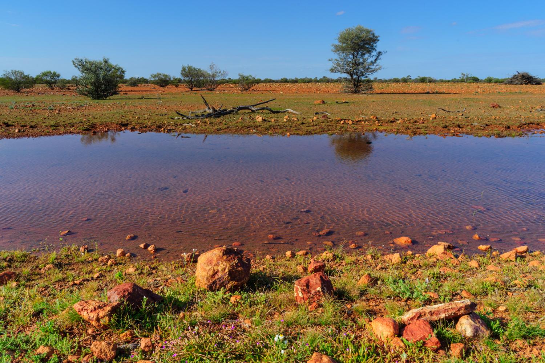 LONR - Outback Qld-99.jpg