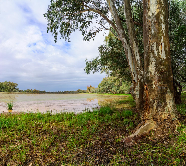 LONR - Outback Qld-104.jpg