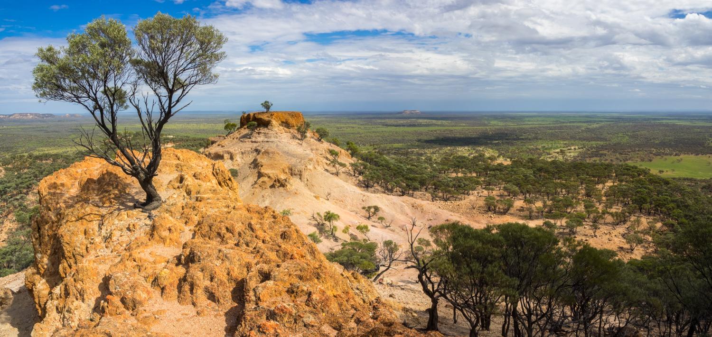 LONR - Outback Qld-81.jpg