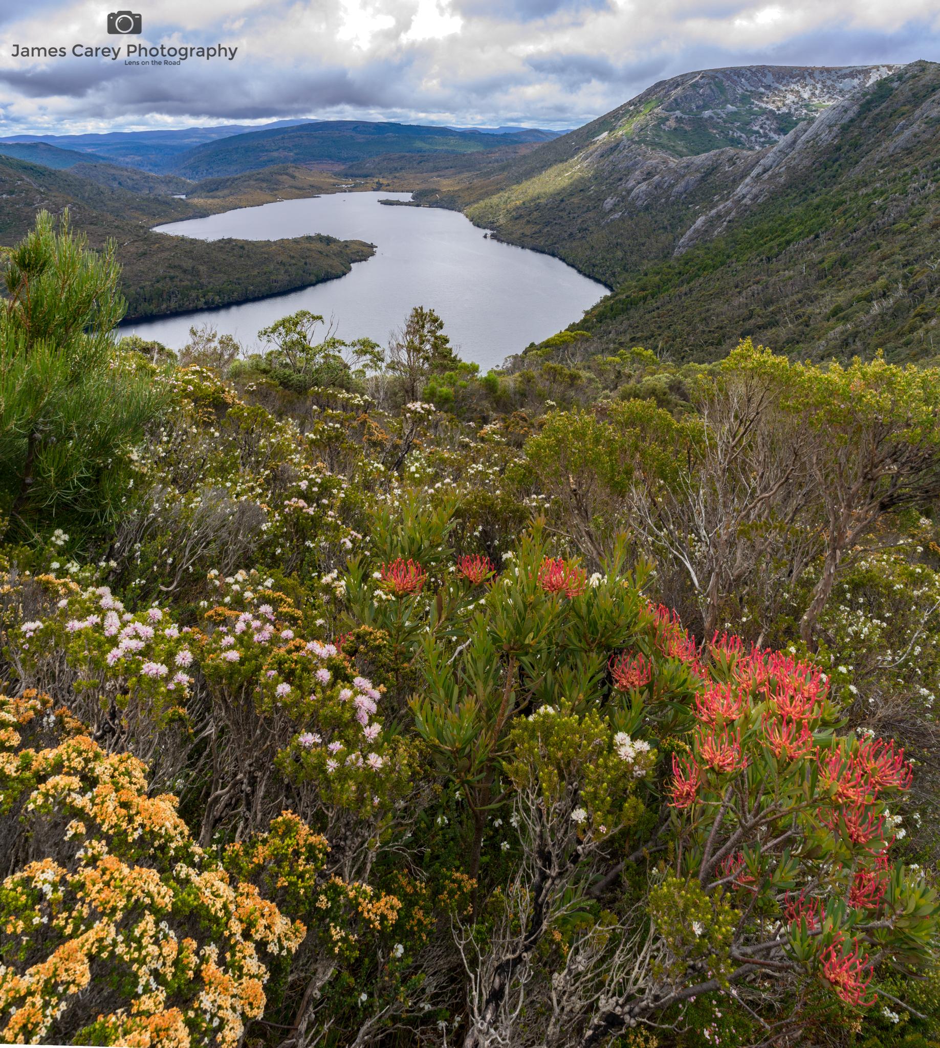 LONR - Tasmania-6.jpg